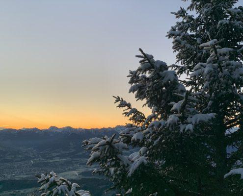 freistil. Oberallgäu. Natur. Sonnenaufgang am Steineberg, Blick auf Oberstdorfer Berge, verschneite Tanne